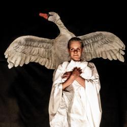 «Лебедь» / Alarch