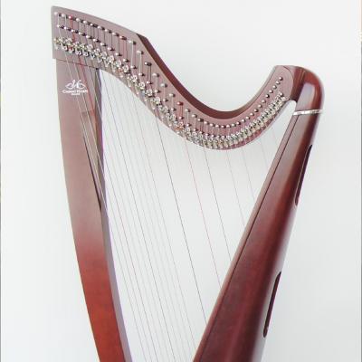 Музыкальный вечер. Кельтская и классическая арфа